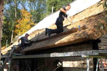 Reet Waldemar Wesner und Eduard Hartoan (v.l.) bei der Arbeit: Die Dachdecker ersetzen das alte Reetdach durch eine neue Abdeckung. Foto: Benedikt Giesbers
