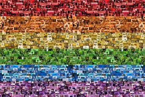 Homosexualität kommt im Tierreich häufig vor, wie diese Schwulen- und Lesben-Regenbogenfahne zeigt, welche aus lauter Tierfotos besteht, bei denen homosexuelle Handlungen nachgewiesen wurden. Foto: LWL/Oblonczyk