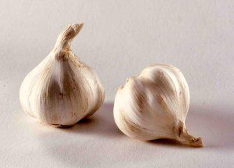 Knoblauch zählt neben Bärlauch zu den besonders krebsvermeidenden Lebensmitteln und wird häufig mit Misteln und Weißdorn als ganzheitliche Herz-Kreislauf-Kombination verwendet. Foto: Wirths PR/Schoenenberger