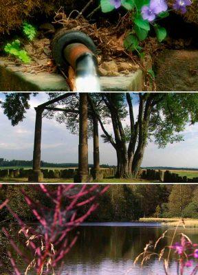 Bild oben: Der Jungfrauenbrunnen bei Buchenau. Bild Mitte: Die Richtstätte Beerfelden. Bild unten: Das Rote Moor in der Rhön. Foto: HR/Bildmontage