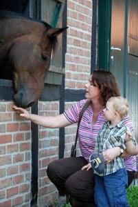 Ganz nah heran an die Tiere kommen die Besucher des Pferde-Stärken-Wochenendes im August. Foto: Münsterland e.V./Marion Wegmann