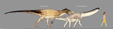 Größenvergleich eines Menschen mit dem durch die Fußspuren belegten räuberischen Theropoden sowie dem pflanzenfressenden Zwerg-Dinosaurier Europasaurus. (c) Zeichnung: Joschua Knüppe/2015