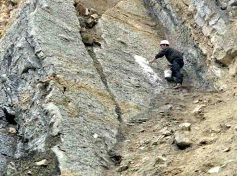 Nils Knötschke vom Dinopark Münchehagen bei der Bergung der Fußspuren im Jahr 2003. Um ein Zerbrechen der Fußspuren beim Herausklopfen aus dem Gestein zu verhindern, wurden sie vor der Bergung mit einem Gipsmantel umgeben. (c) Foto: Holger Lüdtke/2003