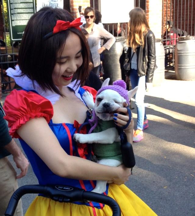tompkins-square-halloween-dog-11