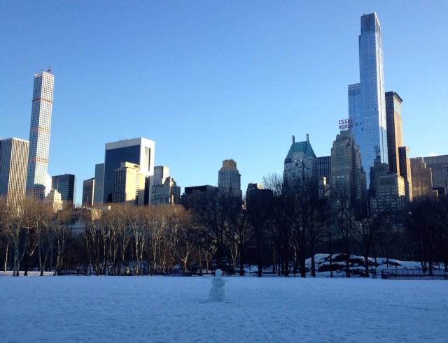 central-park-winter