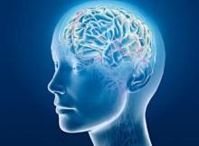 093 - brain creative - 4097561067_cc2a4984bf_o_d