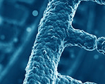 Selah Genomics Expands Personalized Medicine Assays