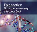 Scientists Map Connections between Genetic Variants and Epigenetic Tags