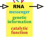 Worldwide Study Demonstrates Accuracy of RNA Genomic Sequencing