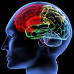 Hypermethylation Protects against Certain Neurodegenerative Diseases
