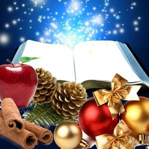 christmas splendor fragrance oil