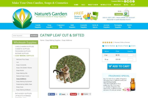 catnip page