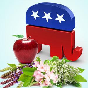 Republican Fragrance Oil