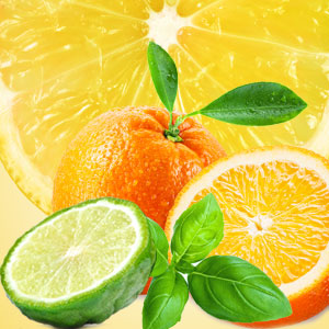 Cool Citrus and Basil Type Fragrance Oil