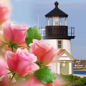 Nantucket Garden Fragrance Oil