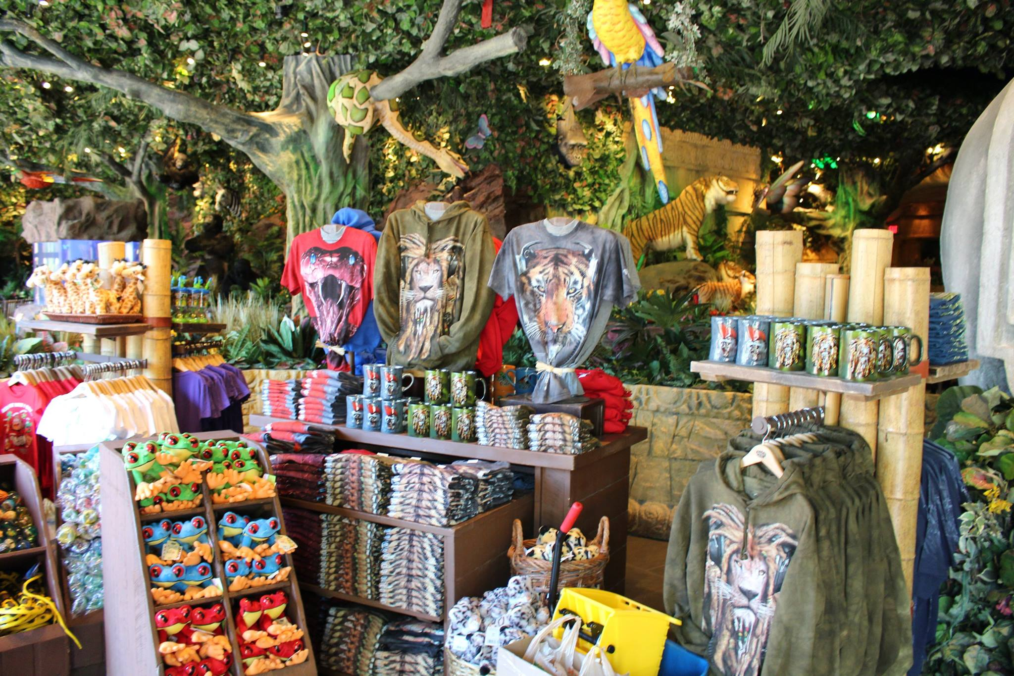 Rainforest Cafe in the Falls now open | The NiagaraHub