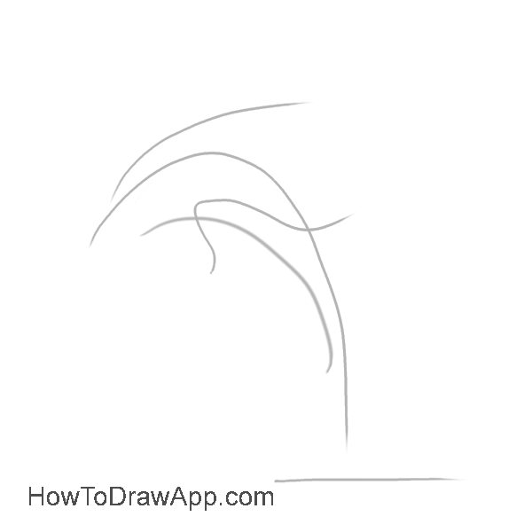 How to draw a dolphin 01