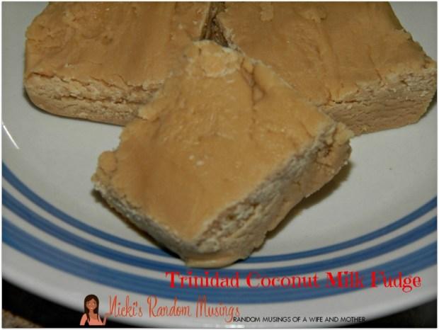 Coconut Milk Fudge
