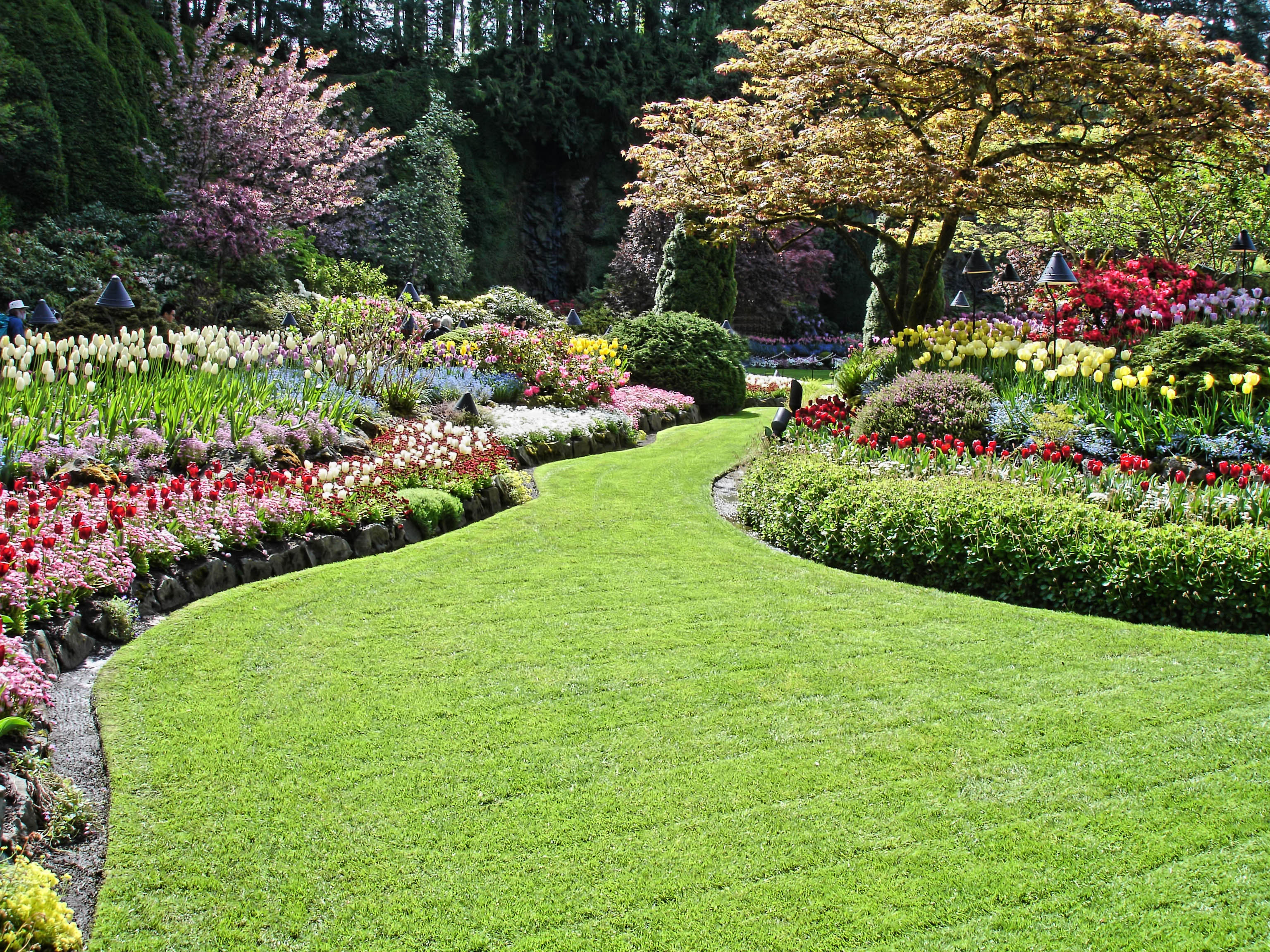 Divine Small Landscaped Front Yards S Small Yards Landscaped Why Contract A Landscaping Why Contract A Landscaping Night Helper S outdoor Pictures Of Yards Landscaped