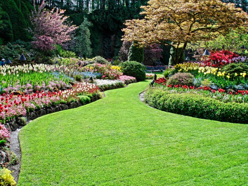 Divine Small Landscaped Front Yards S Small Yards Landscaped Why Contract A Landscaping Why Contract A Landscaping Night Helper S