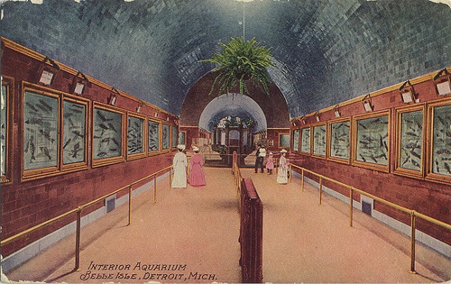 belle-isle-aquarium-postcard