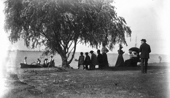 belle-isle-willow-tree-1893