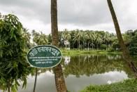 A Pond at Natore Royal Palace