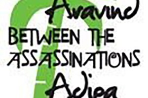 between-assassinations