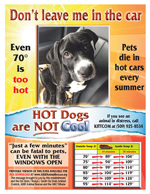 Preview_thumbnail_pets_in_cars_flyer
