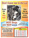 FREE DOWNLOAD - Pets in Hot Cars Flyer
