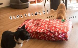 facebookクリスマス猫-02