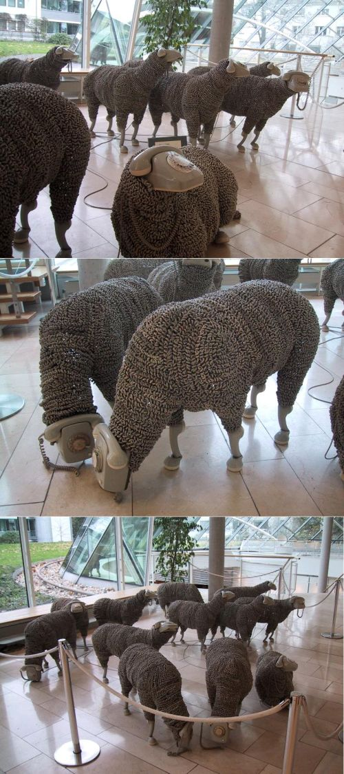 Jean-Luc Cornec\'s sheep