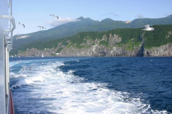 知床観光船おーろら号の航跡とカモメ