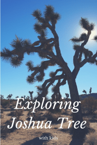 Exploring Joshua Tree
