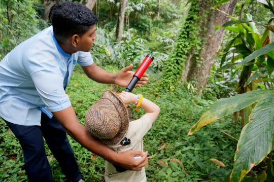 Hiking in the Jungles of Periyar - Kerala with Kids