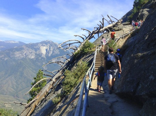 Sequoia National Park in One Day - Hike up Moro Rock
