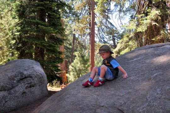 Sequoia National Park in One Day - Lots of time to rock climbing!
