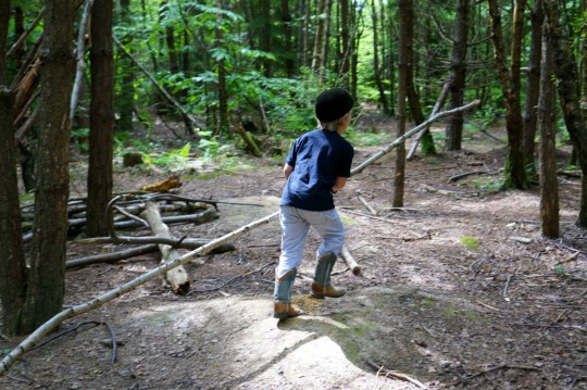 Adventure Play Forests - England's Outdoor Secret