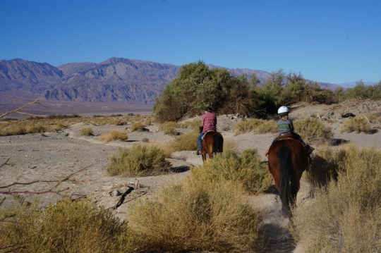 Death Valley with Kids - Horseback Riding