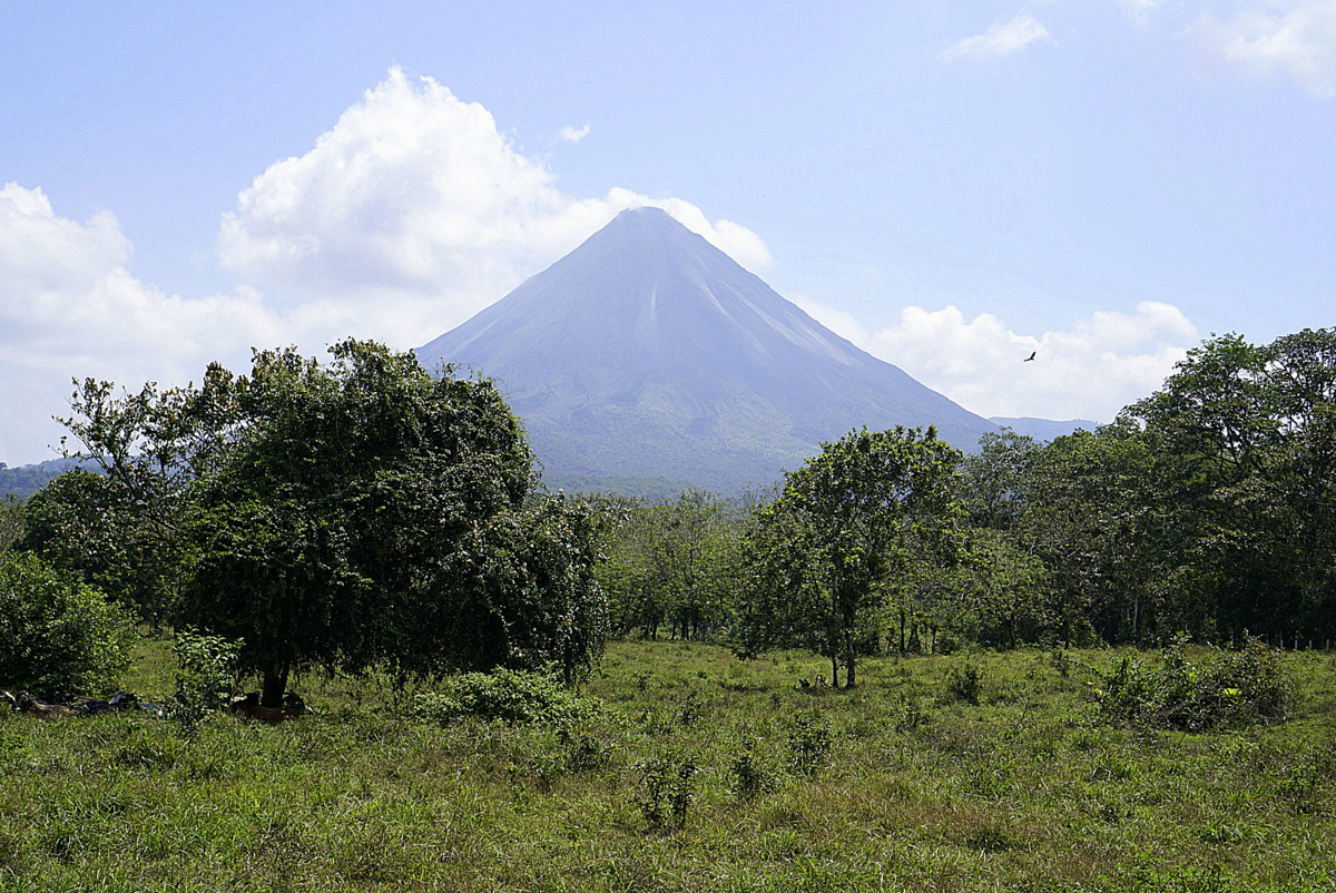 Arenal or Monteverde? Which is better?