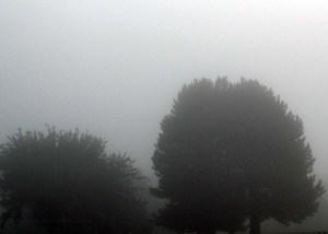 2011 08 21_5589