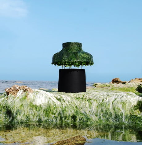Marine Light Nir Meiri 8 e1369140425456 Israeli Designer Uses Seaweed To Create Cool Lamps
