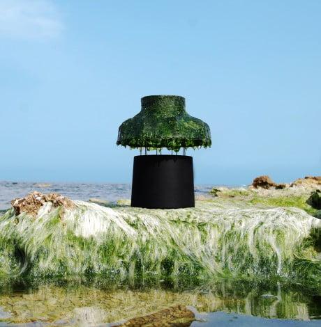 Marine Light Nir Meiri 8 e1369140425456 Israeli Designer Uses Seaweed To Create Cool Lamps