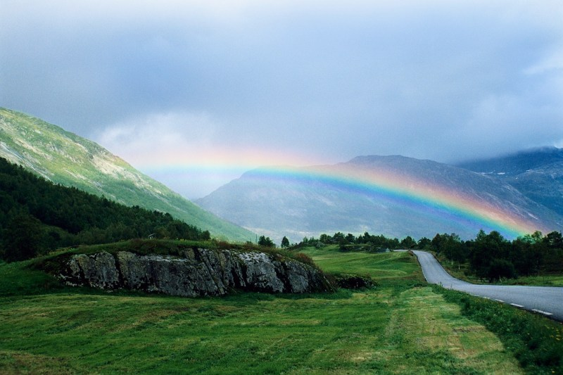Large Of Rainbow Bridge For Dogs