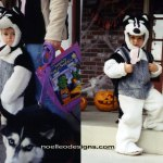 preschool steps in husky costume