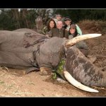 Killing for conservation @e2mq173 comments