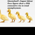 Queensland's August labour force figures show a fifth consecutive rise in trend unemployment.