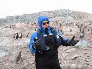 penguin-669217