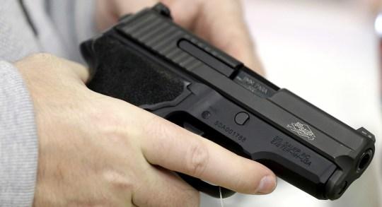 Gun Measures2