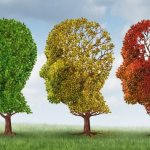 Alzheimer's Stages: 7 Stages of Alzheimer's Disease